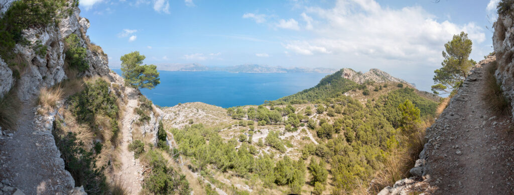 Imagen de Camino de Sa Talaia. Alcudia